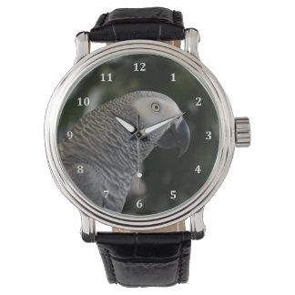 Gris africano pacífico reloj
