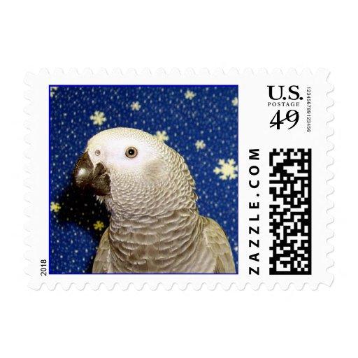 Gris africano (pequeño) sellos