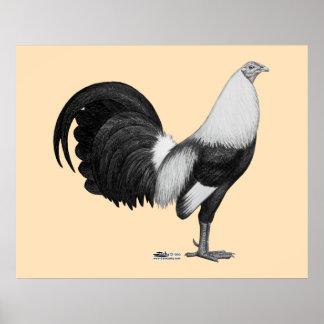 Gris Duckwing del gallo de pelea Póster
