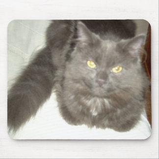 Gris hermoso mousepad