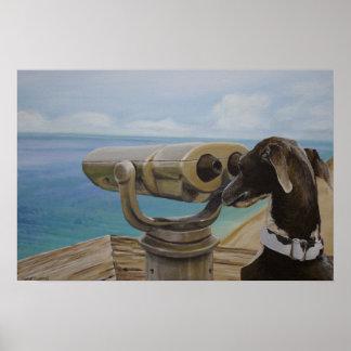 Gris que mira - pintura del galgo italiano póster