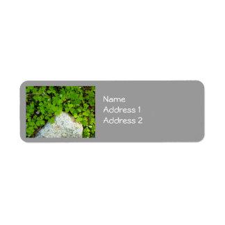 Gris y verde etiquetas de remite