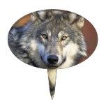 Gris y White Wolf Decoraciones Para Tartas