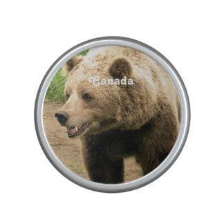 Grisáceo canadiense altavoz