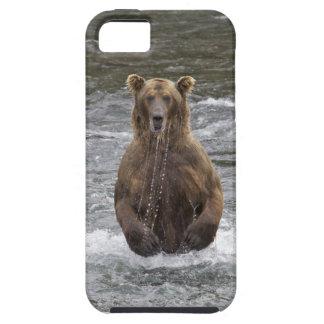 Grisáceo de Alaska iPhone 5 Case-Mate Cobertura