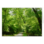 Grist Mill Trail I Patapsco State Park Maryland Card