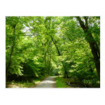 Grist Mill Trail I Patapsco State Park Maryland Postcard