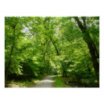 Grist Mill Trail I Patapsco State Park Maryland Poster