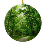 Grist Mill Trail II Patapsco State Park Maryland Ceramic Ornament