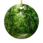 Grist Mill Trail II Patapsco State Park Maryland Ceramic Ornament