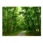 Grist Mill Trail II Patapsco State Park Maryland Postcard