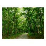Grist Mill Trail II Patapsco State Park Maryland Poster