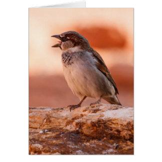 Grite hacia fuera ruidosamente tarjeta de felicitación