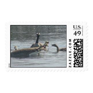 Griterío del partido sello postal