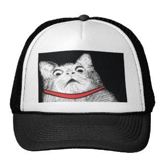 Grito de asombro sorprendido Meme - gorra del gato