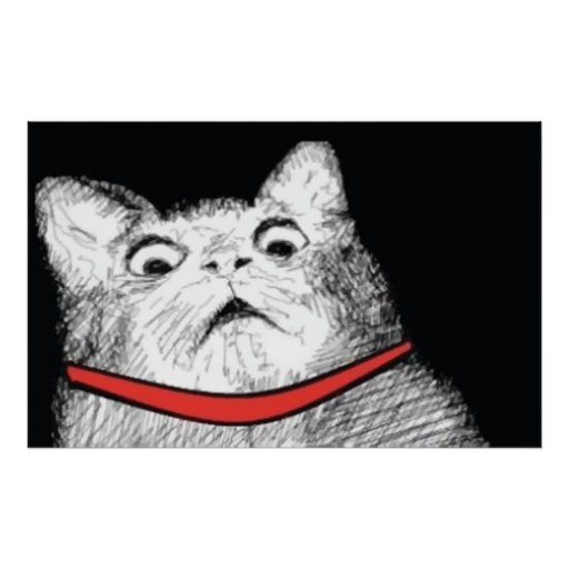 Grito de asombro sorprendido Meme - poster del gat