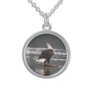 Grito de guerra del águila calva collares de plata esterlina