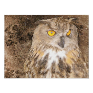 Gritty Eagle Owl Poster