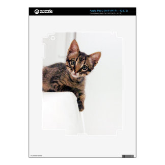 grizol de Nana iPad 3 Pegatinas Skins