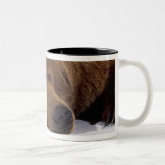Grizzle Bear Mug