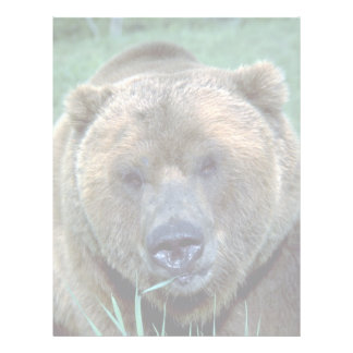 Grizzley bear letterhead