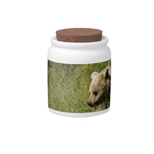 Grizzlies Candy Jar