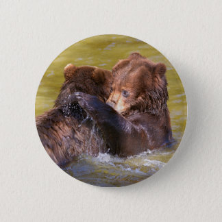 Grizzlies in the water pinback button