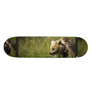 Grizzlies Skateboard
