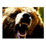 Grizzly Attack Postcard