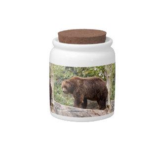grizzly-bear-001 candy jar