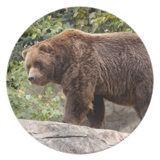 grizzly-bear-001 party plates
