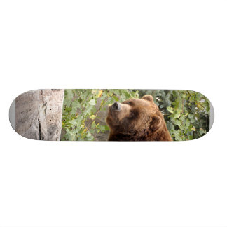 Grizzly Bear 001 Skateboard