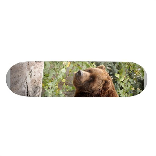 Grizzly Bear 001 Skateboard