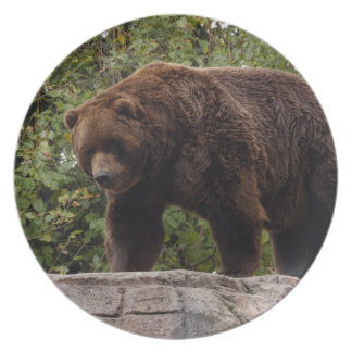 grizzly-bear-002 dinner plate