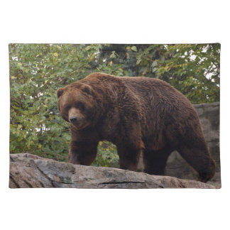 grizzly-bear-004 cloth placemat