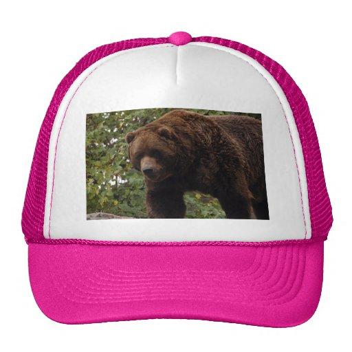 grizzly-bear-005 gorro de camionero