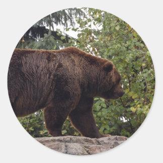 grizzly-bear-007 classic round sticker