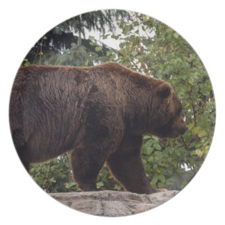 grizzly-bear-007 party plate
