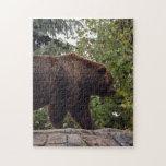 grizzly-bear-007 puzzle con fotos