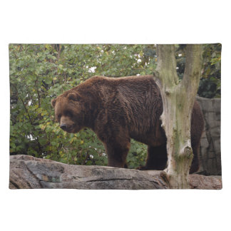 grizzly-bear-008 cloth placemat