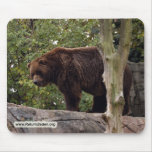 grizzly-bear-008 mouse pad