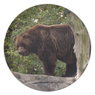 grizzly-bear-008 dinner plates