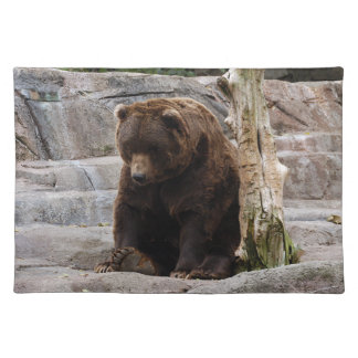 grizzly-bear-010 cloth placemat