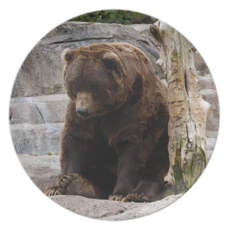 grizzly-bear-010 party plate