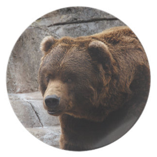 grizzly-bear-011 plate