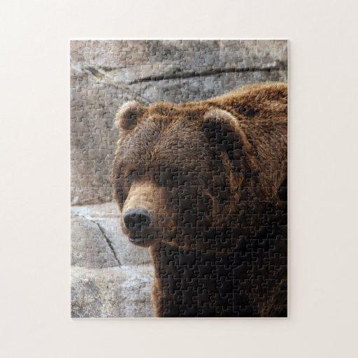grizzly-bear-011 rompecabeza con fotos