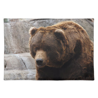 grizzly-bear-012 cloth placemat