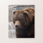 grizzly-bear-012 rompecabeza con fotos
