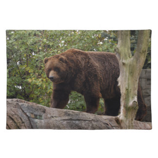 grizzly-bear-013 cloth placemat