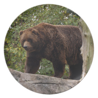 grizzly-bear-013 dinner plate
